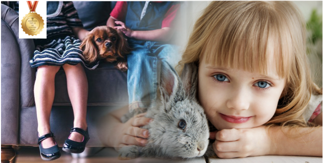 Foster carer pets and children