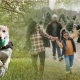 Foster care and having a pet dog
